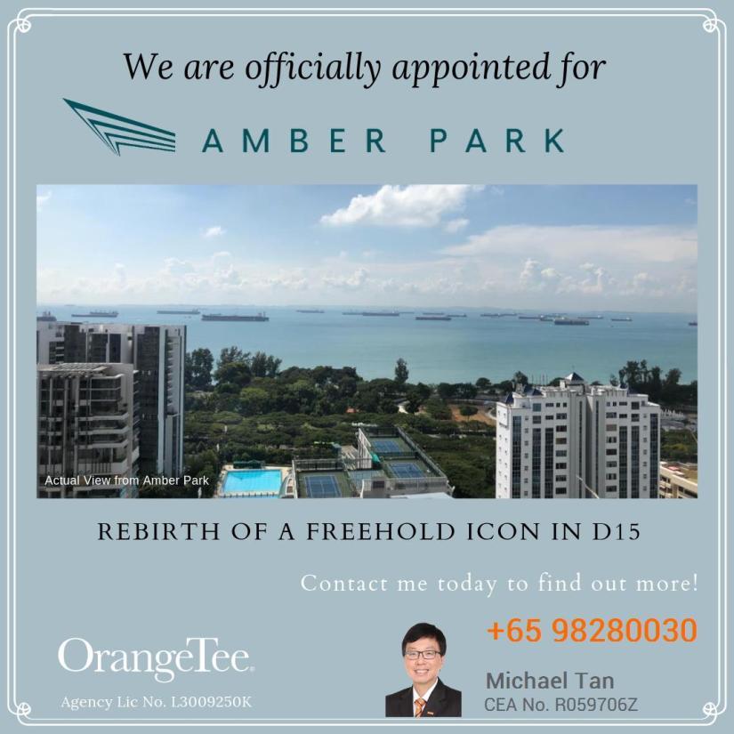 Amber park flyer1.jpeg