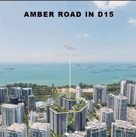 amber road in D15