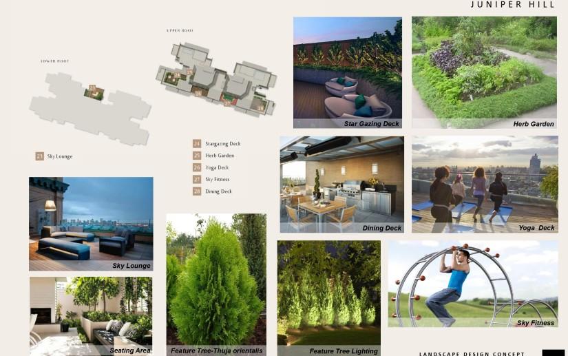 JH - Landscape COEN Slides_page-0010